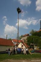 Maibaumsetzen 2005 33