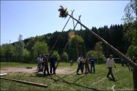 Maibaumsetzen 2007 8