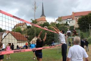 Volleyball 2013 12